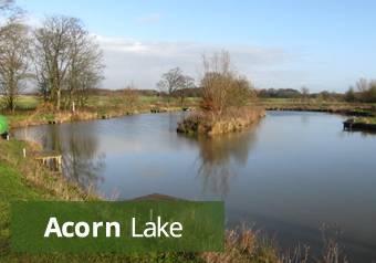 acorn-lake